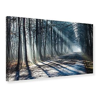 Canvas Print Forest Into The Light Beam