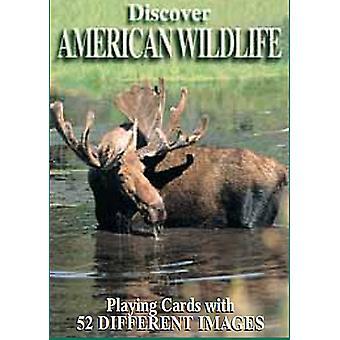 Entdecken Sie American Wildlife Satz von 52 Spielkarten + Joker