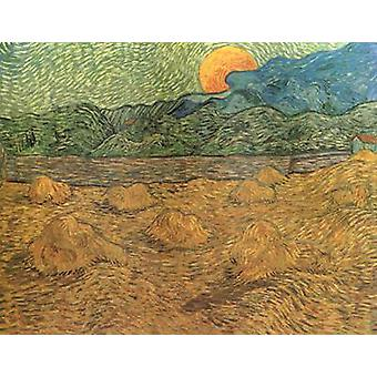 Evening landscape with Rishing Moon, Vincent Van Gogh