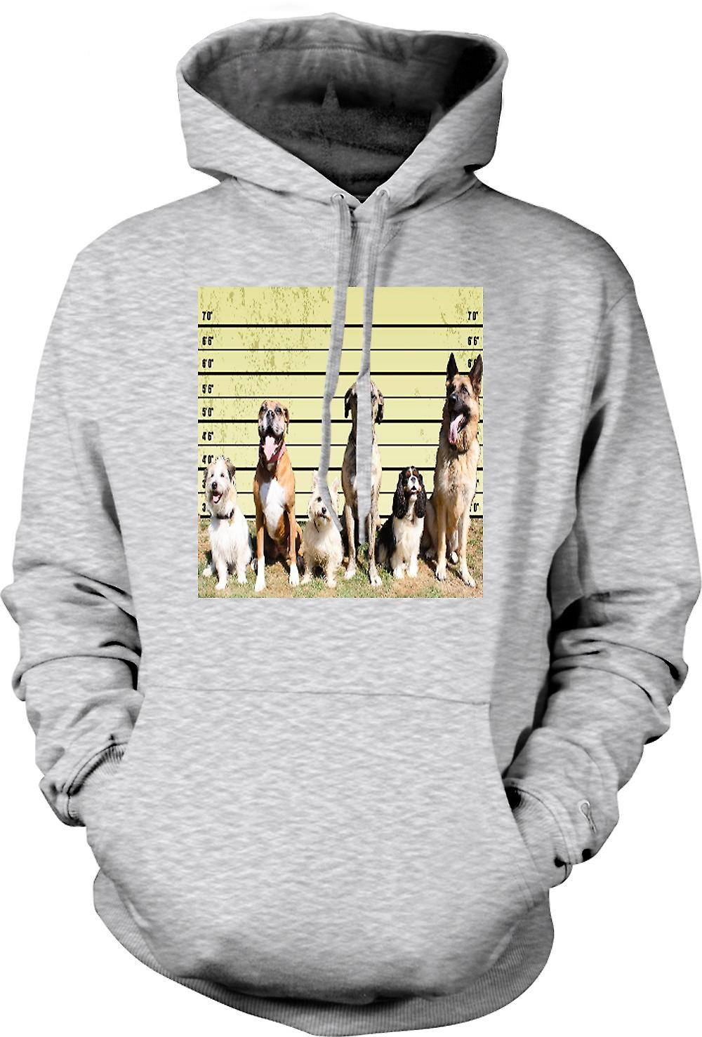 Mens Hoodie - Pet Dog Police Line Up