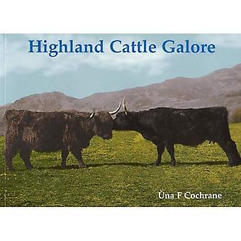 Highland Cattle à gogo