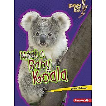 Meet a Baby Koala (Lightning Bolt Books Baby Australian Animals)