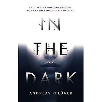 Al buio (un Thriller di Aaron Jenny)