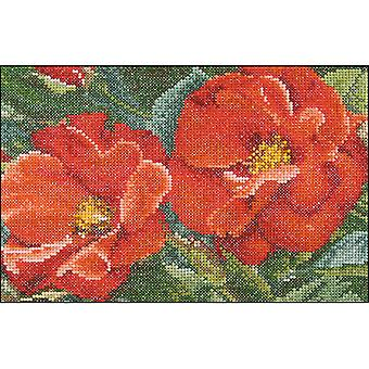 Orangenlimonade Rose auf Aida gezählt Cross Stitch Kit-6,75