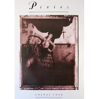 ピクシーズのサーファー ・ ローザ ポスター ポスター印刷