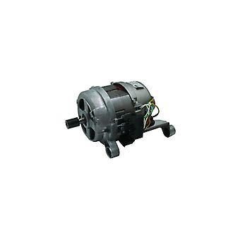 ZANUSSI Motor