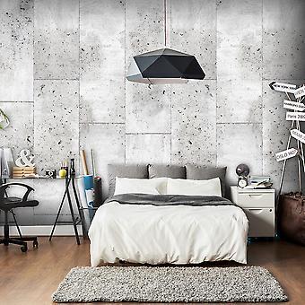Wallpaper - Concretum murum