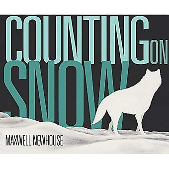 Counting On Snow [Board book]