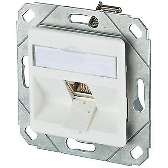 Network outlet Flush mount Insert with main panel CAT 6 1 port Metz Connect Pure white