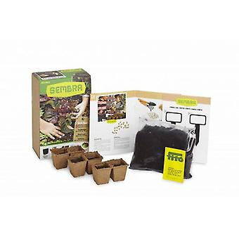 Sembra Lettuce Mini Kit (Outdoor , Garden Toys , Tables And Chairs)