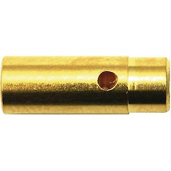 Battery plug, Battery receptacle 4mm Gold-plated 1 pair Modelcra