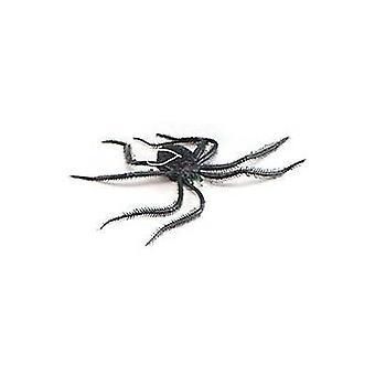 Bnov пауки длинноногие