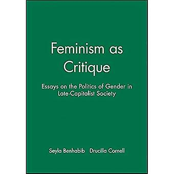 Feminism as Critique (Feminist Perspectives)