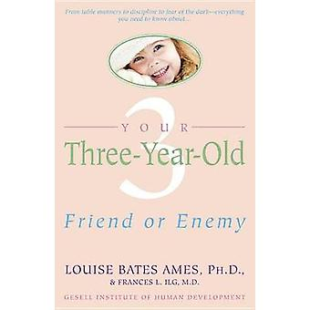 Your Three Year Old by L Ames - 9780440506492 Book