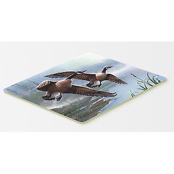 Carolines tesoros PTW2054CMT gansos en el ala cocina o alfombra de baño 20 x 30