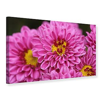 Leinwand drucken Chrysanthemen