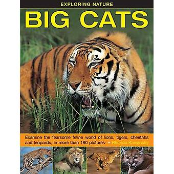 Exploring Nature - Big Cats - Examine the Fearsome Feline World of Lion