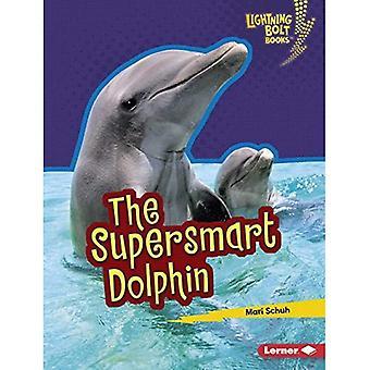 The Supersmart Dolphin (Lightning Bolt Books (TM) -- Supersmart Animals)