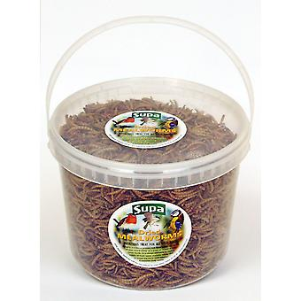 Supa Dried Mealworms 3ltr