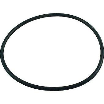 Pentair Sta-Rite U9-369 Tank Flange O-Ring for Pool and Spa Sand Filters