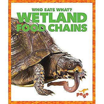 Wetlands Food Chains (Who Eats What?)