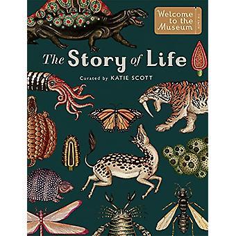 Die Geschichte des Lebens - Evolution (Extended Edition) von Katie Scott - 9781