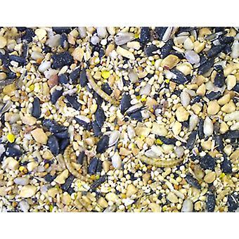 Dawn Chorus Blåmejse insekt & Mealworm blande 12,55 kg