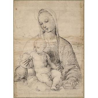 Raphael - Madonna of the Pomegranate Poster Print Giclee