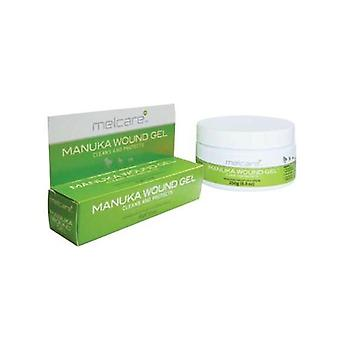 PAW Manuka Wound Gel 250G Tub by Blackmores