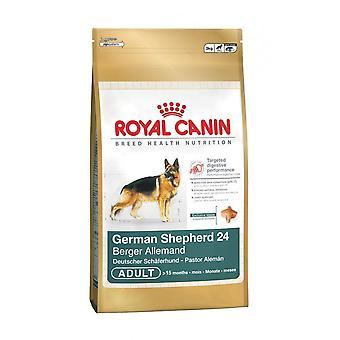 رويال كانين الغذاء الكبار الجافة الكلب الراعي الألماني 12 كغم