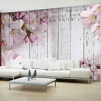 Wallpaper - Apple Blossoms