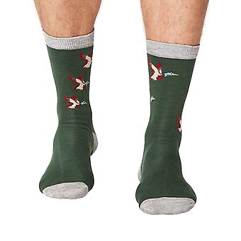 Mallard men's super-soft bamboo crew socks in forest   By Thought
