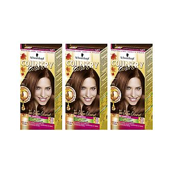 Schwarzkopf Country Colours 65 Highlands Chestnut Semi-Perm Hair Dye x 3 Pack