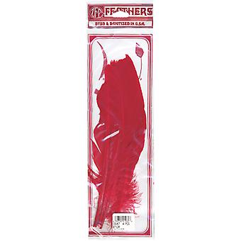 Turkey Quill Feathers 4 Pkg Red B712 R