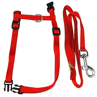 DIGIFLEX Kitten Cat Outdoor Harness & Lead Strap Adjustable Strong Leash