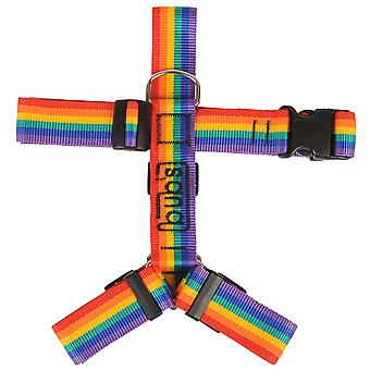 Bub's Arnes Not Pull Mediano Rainbow (Dogs , Collars, Leads and Harnesses , Harnesses)