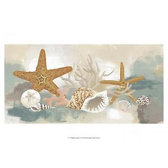 Marine Tableau I Poster Print by June Erica Vess (19 x 13)
