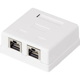 2 ports Network outlet Surface-mount CAT 6 Renkforce KSV-ND20 White RF-4473855