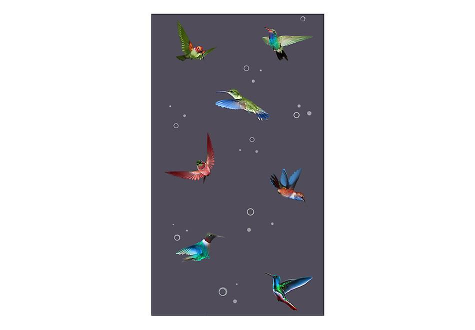 WallpaperFlight Of Of WallpaperFlight Hummingbirds Of Hummingbirds WallpaperFlight Of WallpaperFlight Hummingbirds Hummingbirds mN80vnwO