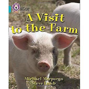 Una visita alla fattoria: banda 07/turchese (Collins Big Cat)