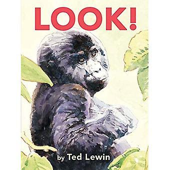 Look! [Board book]