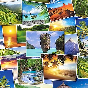 Tropical Photos Wallpaper Palm Trees Beach Forest Sand Paste The Wall Vinyl