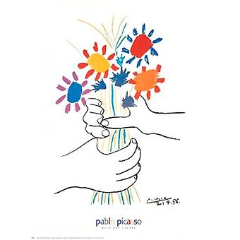Главная aux Fleurs плакат печати Пабло Пикассо (24 x 30)