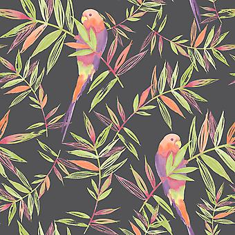 Birds Wallpaper Tropical Parrot Floral Leaves Jungle Black Multi Coloured Raschr