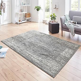 Designer velour carpet Elysium grey cream