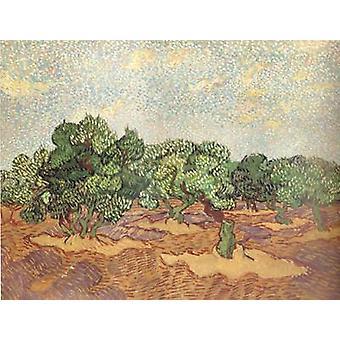 Pale Blue Sky, Vincent Van Gogh, 50x40cm
