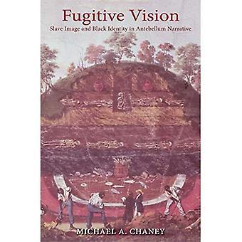 Flyktning visjon: Slave Image og svart identitet i Antebellum fortelling (svarte i Diaspora)