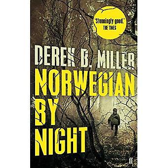 Norwegische bei Nacht