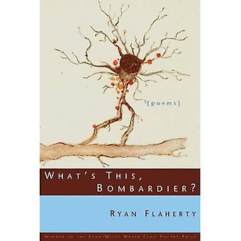 Was ist Bombardier?: Gedichte