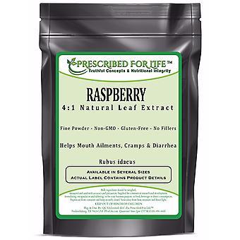 Raspberry - 4:1 Natural Leaf Extract Powder (Rubus idaeus)